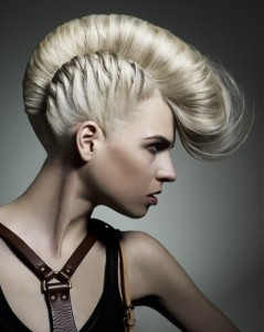 mohawk_braided_women-500x625